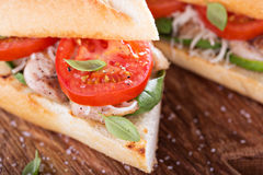 Grilled chicken sandwich with basil and tomatoes Royalty Free Stock Image