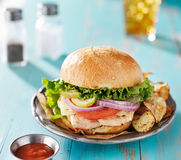 Grilled chicken sandwich Royalty Free Stock Photo