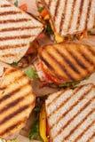 Grilled chicken sandwiches stock photos