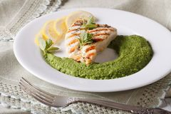 Grilled chicken and a side dish of green peas, horizontal Royalty Free Stock Images