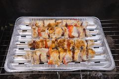 Grilled chicken skewers on the aluminium plate in the garden grill. Royalty Free Stock Photos