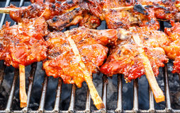 Grilled chicken skewers on a hot stove Royalty Free Stock Photo