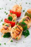 Grilled chicken skewers with paprika Stock Images