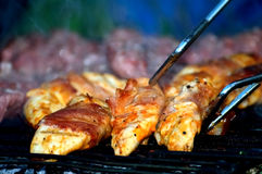 Grilled chicken slices Stock Photo