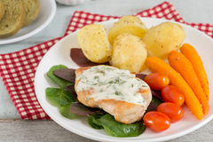 Grilled Chicken steak topping spinach sauce with vegetable. Grilled Chicken steak topping spinach sauce with vegetable and bread Stock Images