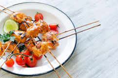 Grilled chicken on sticks with tikka masala sauce Royalty Free Stock Photography