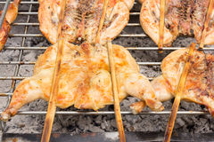 Grilled chicken on stove , Thai food Stock Photography