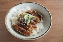 Grilled chicken `Teriyaki` rice bowl. Closeup of grilled chicken `Teriyaki` rice bowl Stock Image