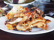 Grilled chicken on white plate Thai food style. Royalty Free Stock Photo
