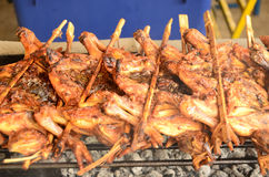 Grilled chickens. Grilled chicken on the chacoal stove Royalty Free Stock Photo