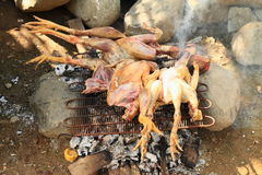Grilled chickens. On market in Waisai (Raja Ampat, Papua Barat, Indonesia royalty free stock images