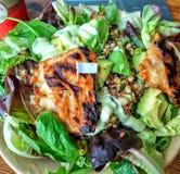 Grilled chiken auf frischem Salat Stockbilder