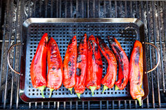 Grilled Chili Royalty Free Stock Photography