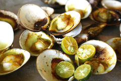 Grilled Clams Royalty Free Stock Photo