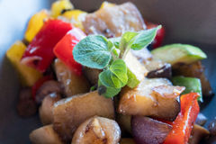 Grilled and colored vegetables dish Stock Images