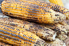 Grilled Corn. As a background Royalty Free Stock Image