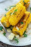 Grilled corn with butter, homemade cheese and cilantro. Stock Photos