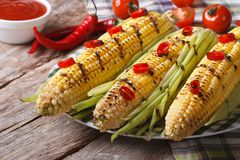 Grilled corn with chili and tomatoes  closeup. horizontal Stock Photos
