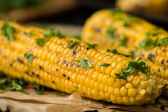 Grilled Corn on the cob with Chili, Cilantro, and Lime Stock Image