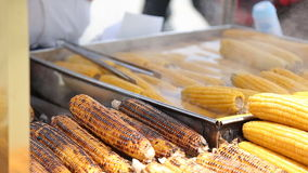 Grilled corn cob on the market in Turkey stock video footage