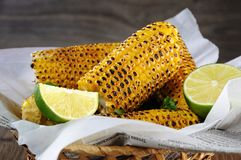 Free Grilled Corn Cobs Stock Photo - 122919730