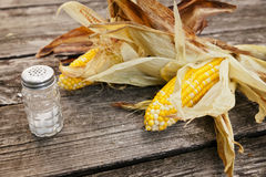 Grilled corn cobs with leaves Royalty Free Stock Images