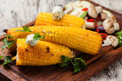 Grilled corn Stock Images