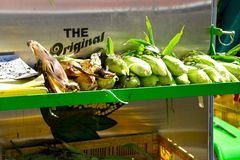 Grilled corn at a fair. Royalty Free Stock Photo