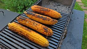 Grilled corn grilled on fire. On a dark iron table. Grilled corn. Delicious street food. Summer party and grill stock image