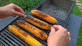 Grilled corn grilled on fire. On a dark iron table. Grilled corn. Delicious street food. Summer party and grill. Hands take or. Hold Grilled corn stock image