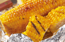 Grilled corn Royalty Free Stock Image