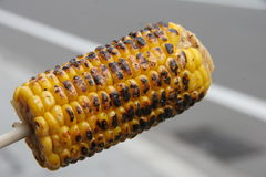 Grilled Corn on a Stick Royalty Free Stock Images