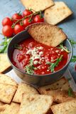 Grilled corn tortilla with sea salt flakes, spicy tomato salsa sauce and feta cheese.  royalty free stock photos