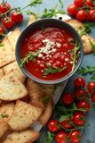 Grilled corn tortilla with sea salt flakes, spicy tomato salsa sauce and feta cheese.  royalty free stock image