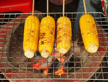 Grilled corn, vegetables on the hot stove royalty free stock image