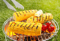 Corncob en brochette Royalty Free Stock Image