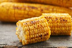 Grilled corns. Tasty grilled corns on grey wooden table Stock Photo