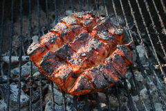 Grilled country style pork loin 6 Royalty Free Stock Photos
