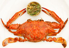 Grilled crab and Thai style apicy sauce Royalty Free Stock Photo