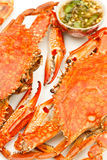 Grilled crab and Thai style apicy sauce Stock Photography