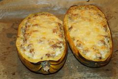 Grilled Cucurbita pepo. Cucurbita pepo filled with minced meat and cheese Stock Images