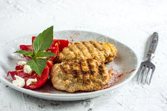 Grilled cutlets burgers. And vegetable salad on white background Royalty Free Stock Image