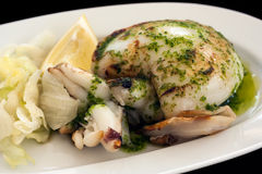 Grilled cuttlefish in garlic sauce Royalty Free Stock Photos