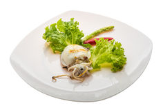 Grilled cuttlefish Royalty Free Stock Photo