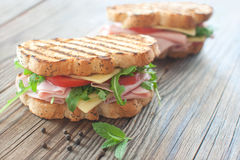 Grilled deli sandwiches Royalty Free Stock Photos