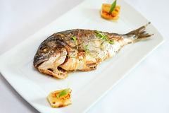 Grilled dorada fish Royalty Free Stock Photography
