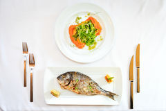 Grilled dorada fish Stock Images