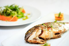 Grilled dorada fish Stock Photography