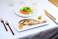 Grilled dorada fish Royalty Free Stock Image
