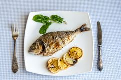 Grilled dorada fish with lemon and spinach Stock Images